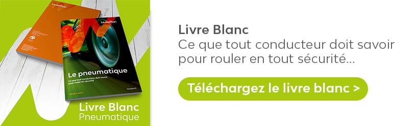 download_livreblanc